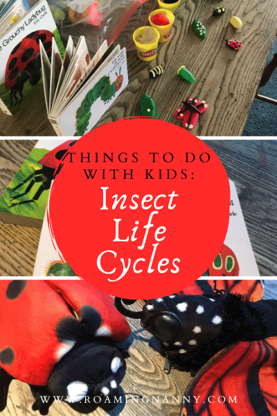 Let's get creative and do science at the same time! Insect life cycles of a butterfly and a ladybug can be fun to make and the kids will be learning at the same time.
