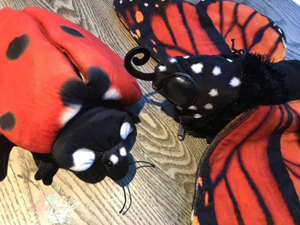 butterfly and ladybug insect life cycles puppets