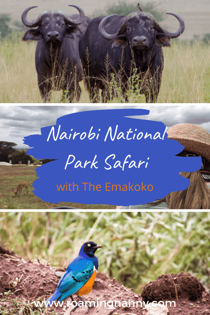 A Nairobi National Park Safari is the most unique places to see lions, zebra, ostrich and more just outside of a major city.