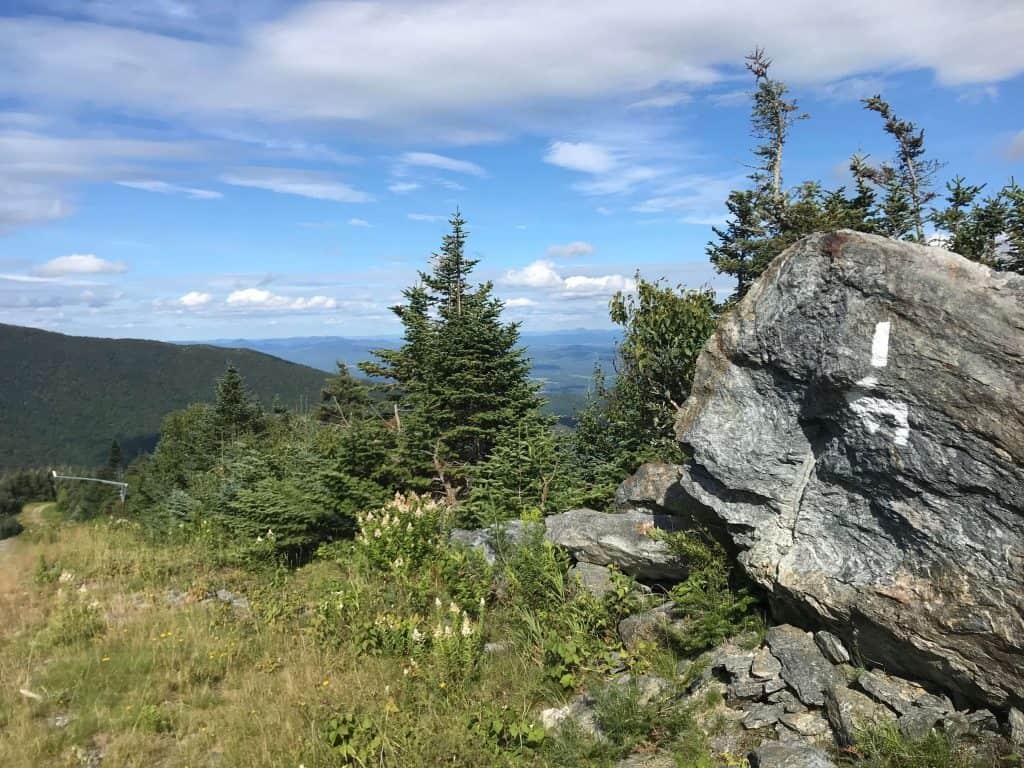 white blazes along the long trail