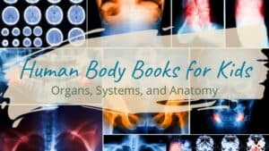Read more about the article Human Body Books for Kids: Organs, Systems, and Anatomy