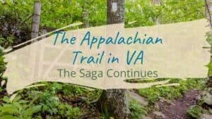 Read more about the article The Appalachian Trail in NorthVA: The Saga Continues