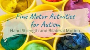 Read more about the article Fine Motor Activities for Autism: Hand Strength and Bilateral Motion